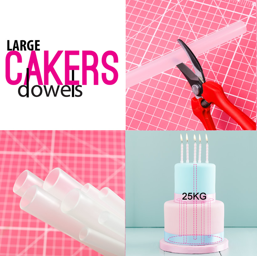 Cakers Dowels - LARGE Opaque (Packs of 100)